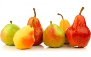 Какие бывают сорта виды груш