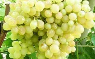 Калий как удобрение для винограда