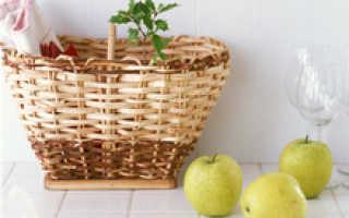 Яблоня в горшке дома