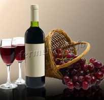Винные сорта винограда описание популярных культиваров