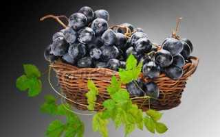Особенности черного винограда