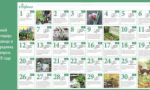 Лунный календарь садовода и огородника на апрель 2020 года