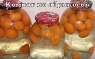 Концентрированный компот из абрикосов на зиму