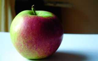 Яблоки польза и вред для организма человека для здоровья