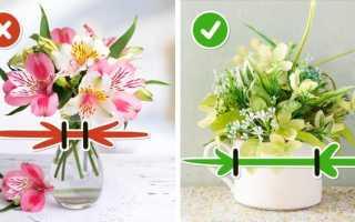 Чтобы цветы стояли дольше в воду добавляют