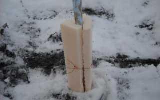 Как подготовить яблоню к зиме в сибири