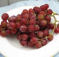 Полезные качества винограда и влияние его употребления на организм
