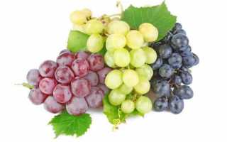 Калорийность зеленого винограда