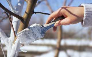 Чем лучше белить деревья осенью