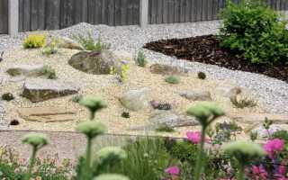Растения для альпинария и рокария