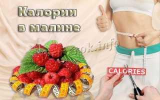 Сколько калорий в малине
