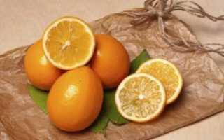 Описание лимона ташкентский