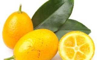 Зеленый апельсин как называется