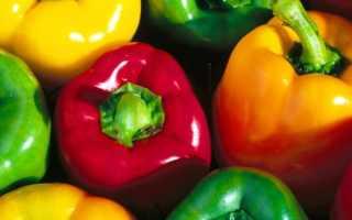 Характеристика перца айвенго