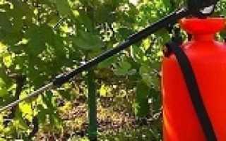 Комплексно устойчивые сорта винограда