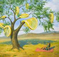 Лимон это кислотный или щелочной продукт