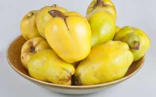 Особенности фрукта айва
