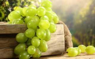 Чем полезен белый виноград