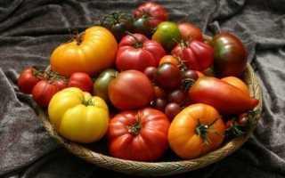 Яблочный томат двадцать первого века