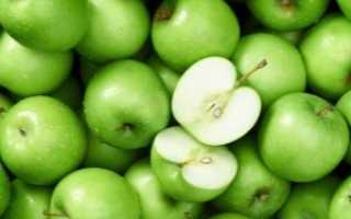 Сорт яблок гренни смит характеристика