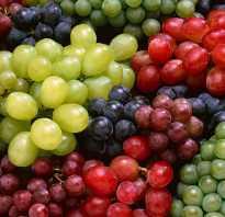 Как правильно хранить виноград Правила хранения